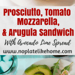 Prosciutto Tomato Cheese and Arugula Sandwich with Avocado Spread
