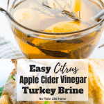 Citrus Apple Cider Turkey Brine Recipe