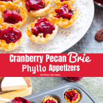 Easy-to-Make Cranberry Pecan Brie Phyllo Appetizers are ready in 15 minutes with only 4 ingredients! SIMPLE, FAST & TASTY for holiday entertaining!