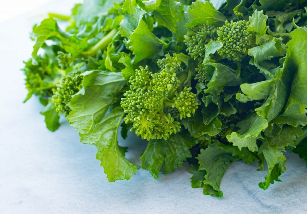 what is rapini?